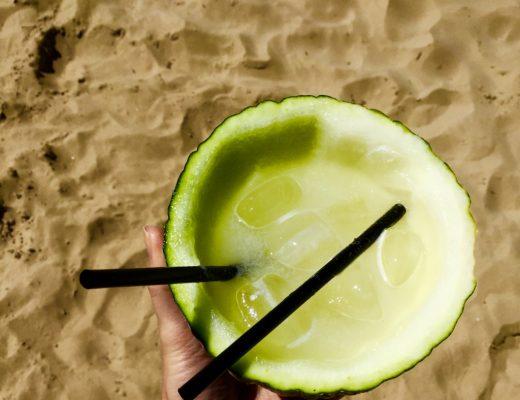 melon fruit cocktail recipe